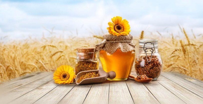 Всё, что необходимо для пасеки и пчеловодствао нужно для пасеки и пчеловодства