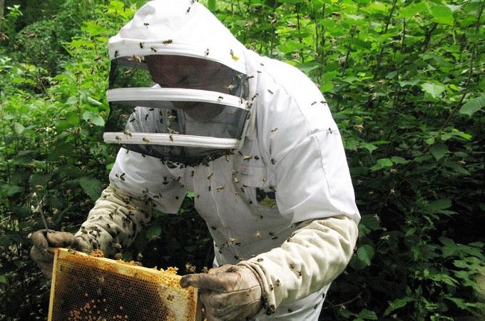 Продажа бизнеса в перми пчеловодство дам в долг деньги без залога г чита частные объявления