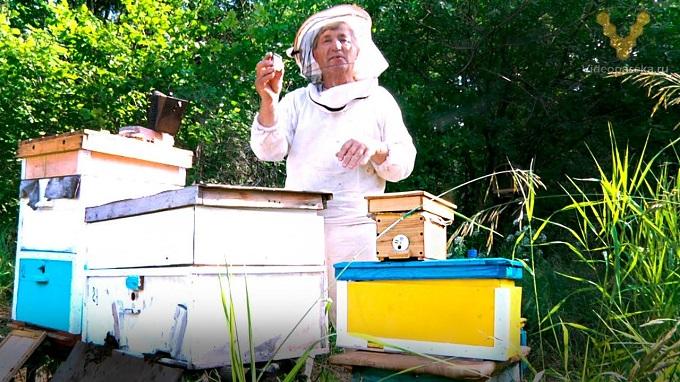 Для занятия пчеловодством придется научится делать самоделки и приспособления