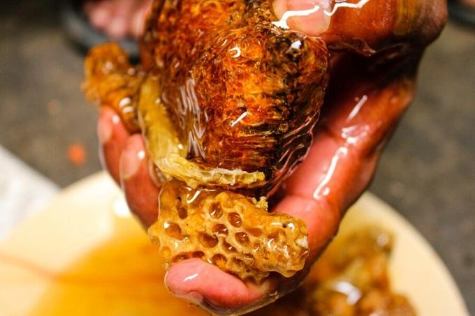 Пчелиные соты являются продуктом деятельности пчел