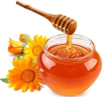 Купите свежий мед – основной продукт пчеловодства