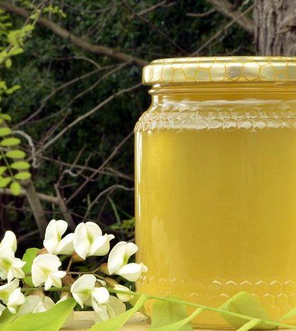 Акация также дает прекрасный натуральный продукт, отличный для ведения пчелоыодческого бизнеса