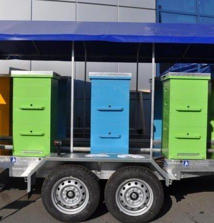 Транспортировка ульев с помощью платформ облегчит пчеловодческий бизнес