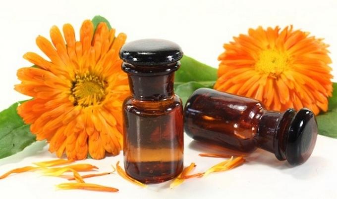 Пчелиный клей как средство для похудения