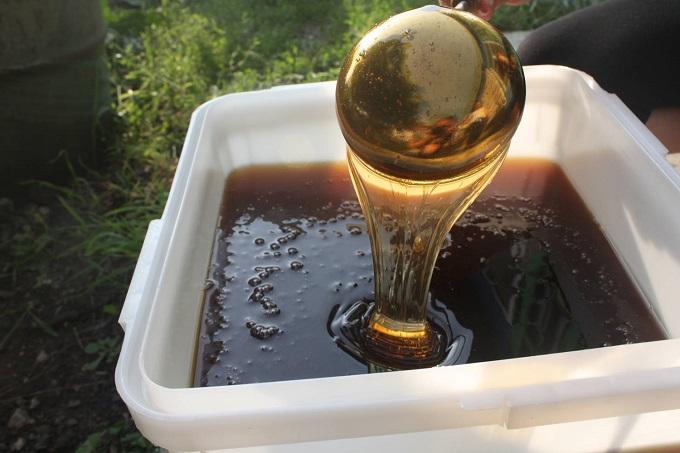 Гречишный мед — очень полезный продукт