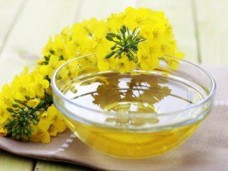 Рапсовый мед не вызывает аллергию