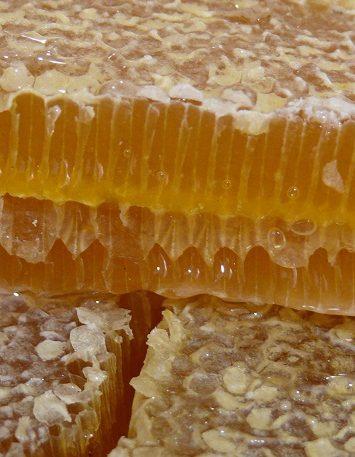 Срезав верхние крышечки с медовых сот, вы получите полезнейший продукт – забрус