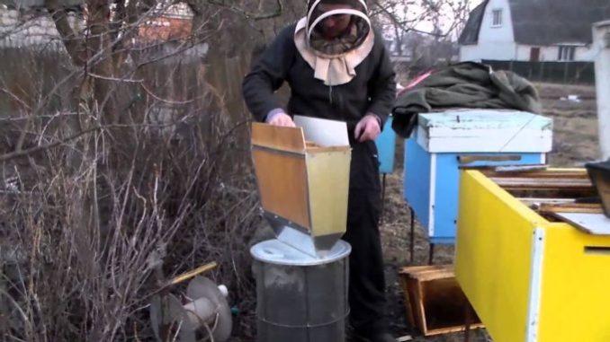 Весенний обработка пчел от клеща