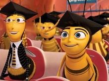 Юридические нормы пчеловодства