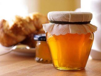 Падевый мед и другие необычные сорта лакомства с пасеки