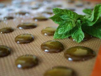 Зеленый мёд - польза и вред необычного лакомства