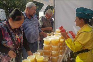 Пчеловодство Казахстана