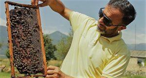 Азербайджанские пчеловоды