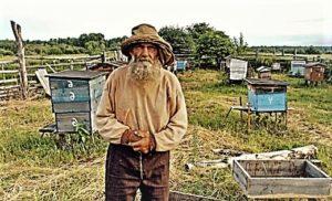 Пчеловодство Сибири